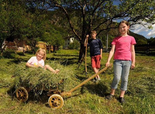 Farm holidays in South Tyrol, Children, Familiy vacations