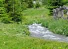 Nature, Farm holidays in South Tyrol, Sarentino Valley
